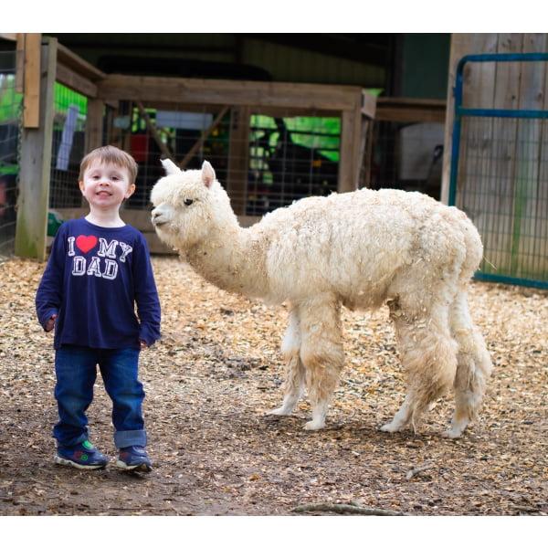 Bigger Zoo To You & 1 Pony 2