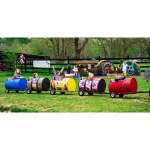 The Zoo-Choo Train