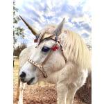 unicorn_resize